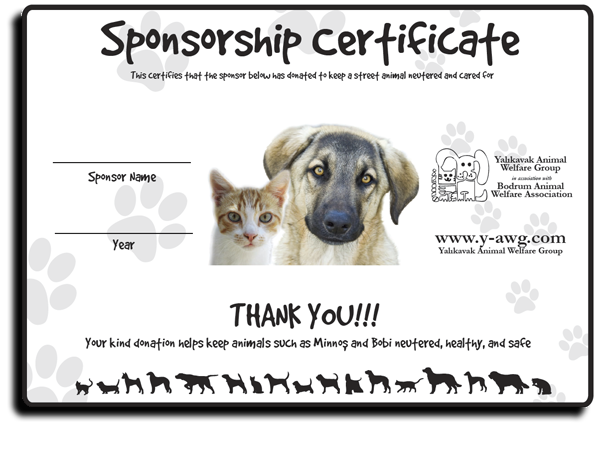Yalikavak Animal Welfare Group Certificate – December 2009