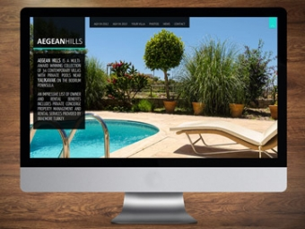 Aegean Hills Community Website – February 2013
